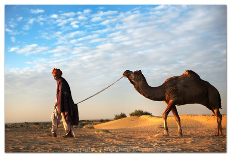 cameleer-and-his-camel