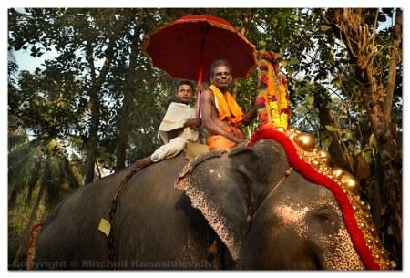 kollam-elephant-procession