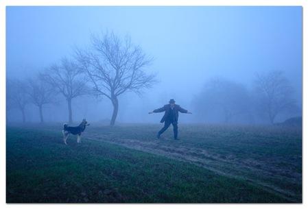 fog-dog