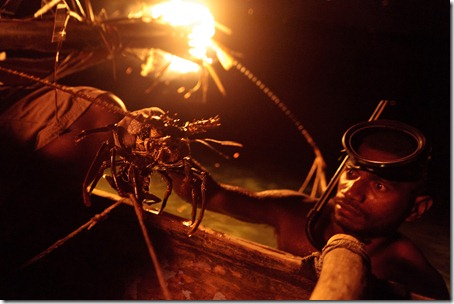 catching lobster-Rah Lava-Banks-Vanuatu