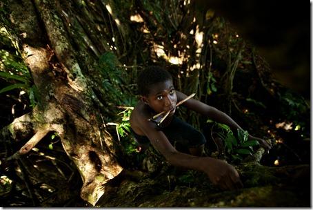 tennage boy climbing-tree-Rah Lava-Banks-Vanuatu